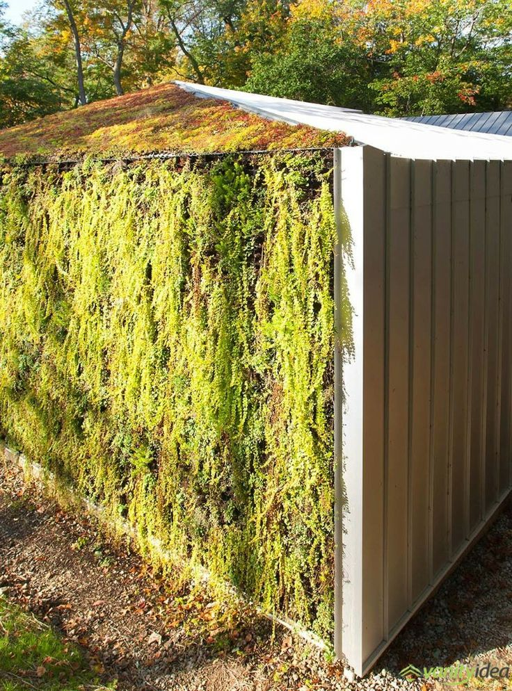 plant wall and roof design