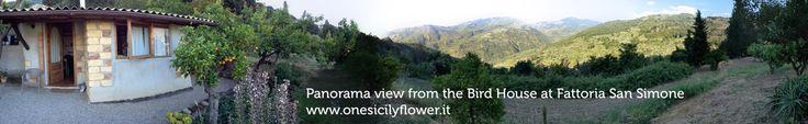 Birds House and panorama view. www.onesicilyflower.it