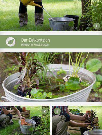 Biotop Anlegen Anleitung. schwimmteich anlegen im garten Überlauf ...