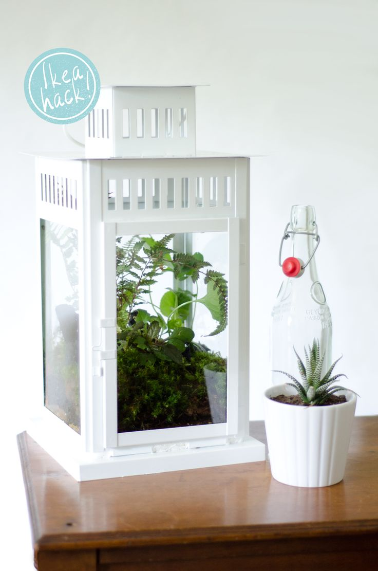 Ikea Hack: #DIY Lantern Terrarium on Thou Swell http://thouswell.co/