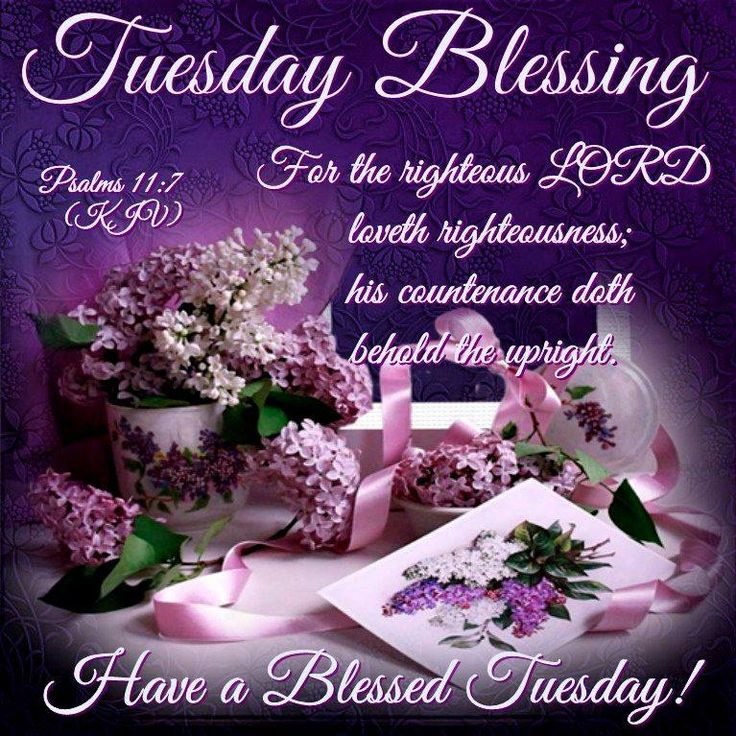 Blessed Day Quotes From The Bible: 17 Best Images About Daily Greetings On Pinterest