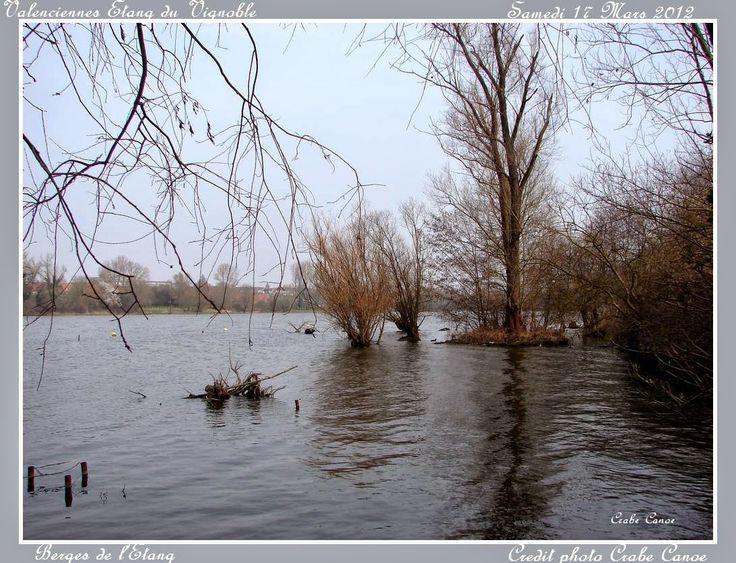 CrabeCanoë: Bord d'étang L'étang est là qui mord sur la terre en hiver. L'étiage monte et descend. La végétation se dore au soleil d'automne en attendant l'hiver et son blanc manteau. Puis à nouveau le printemps précédera l'été.