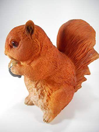 Eichhörnchen 18 x 15 cm futtert Nuss Wald Herbst Tier Figur Deko