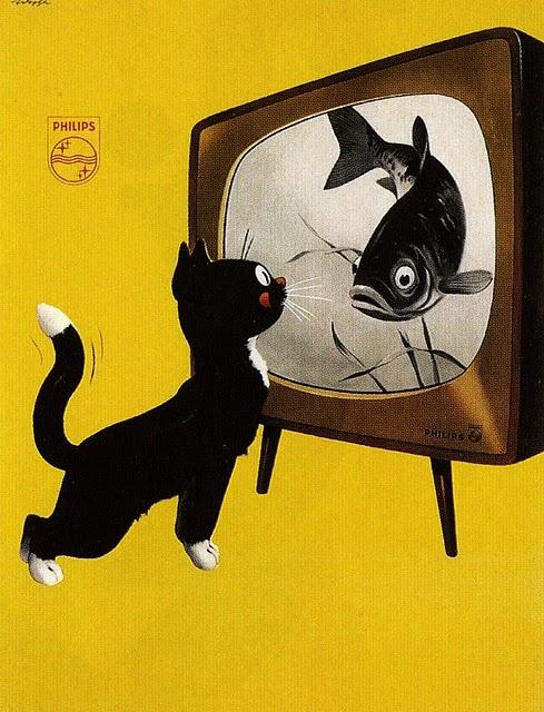 Philips 1951