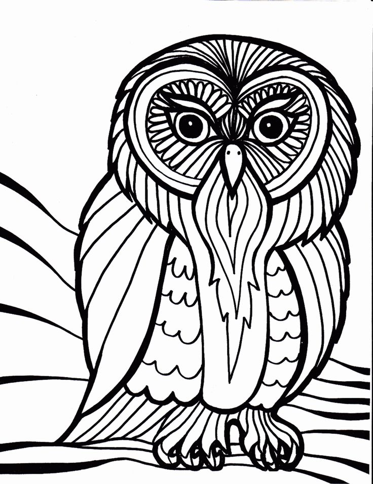 Popular Owl Coloring Pages For Adults