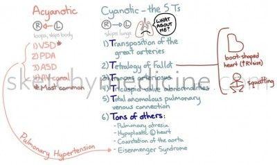 Acyanotic vs Cyanotic Congenital Heart Defects