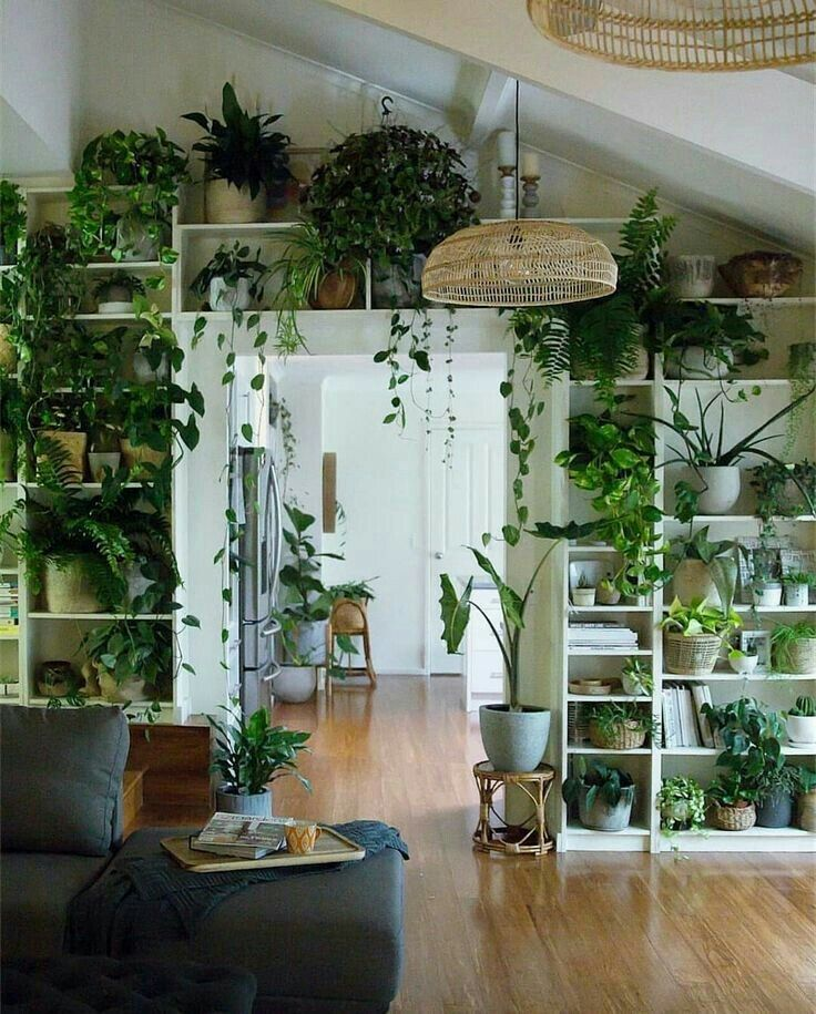 Dozens Of Small Indoor Plants And Ferns Styled Over This Doorway Creates An Incredible Bohemian And Green Focal Home Decor House Plants Decor Room With Plants
