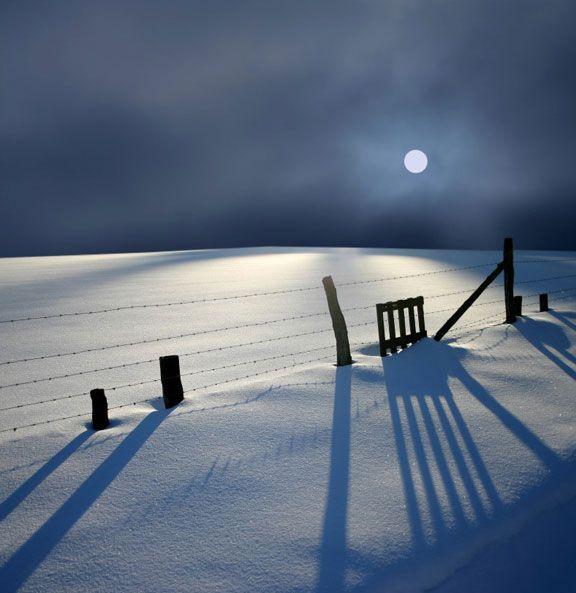 #photography: Photos, Winter Snow, Beautiful, Winter Wonderland, Nature Photography, Winter Shadows, Beauty, Place, Moonlight