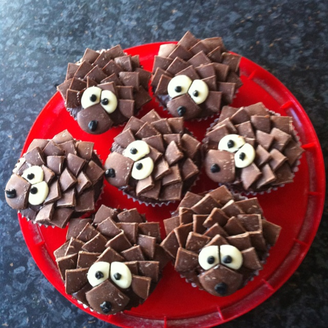 Hedgehog Chocolate Cupcakes  My husbands :)  Decorated with white and milk choolate buttons and a black icing writing pen.