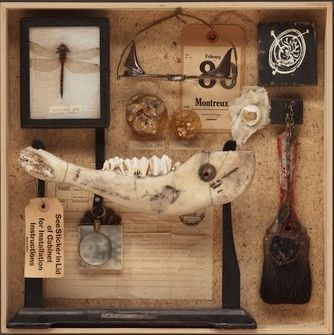 """Cabinet of Curiosities: Box 7"" de Wendy Aikin"