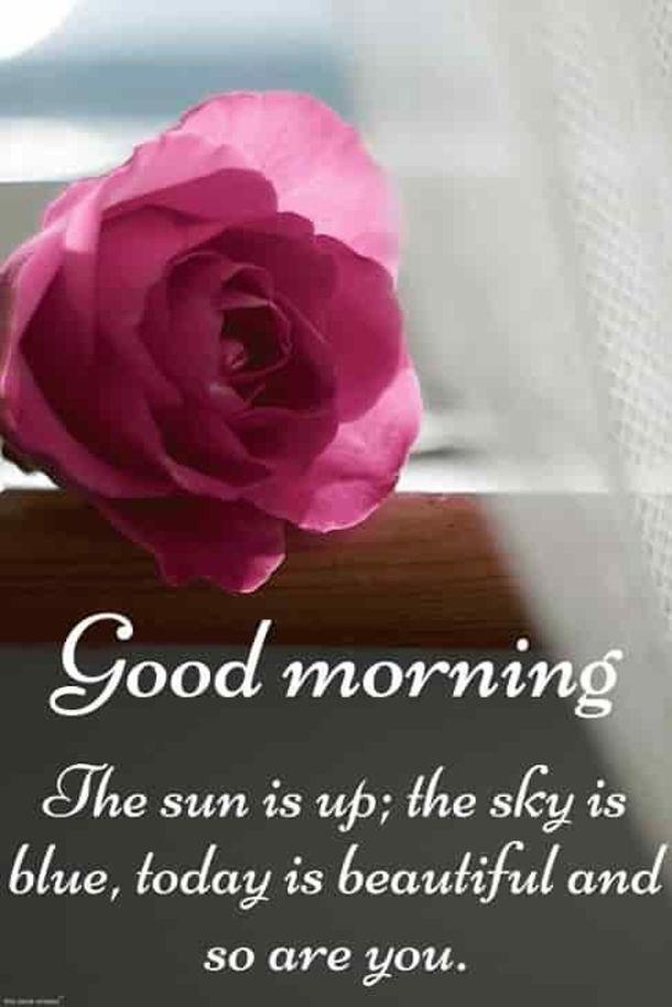 50 Beautiful Good Morning Life Images Good Morning Quotes Good