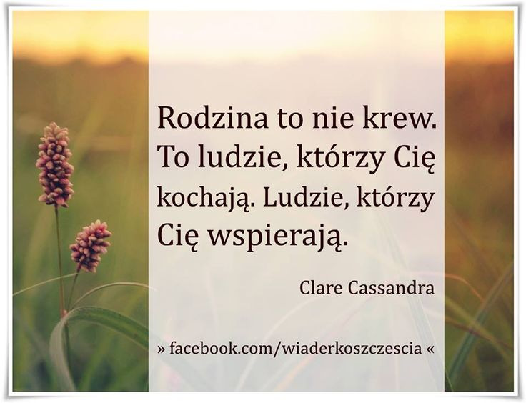 https://www.facebook.com/wiaderkoszczescia/photos/a.407970609263194.95333.407961409264114/799255106801407/?type=1