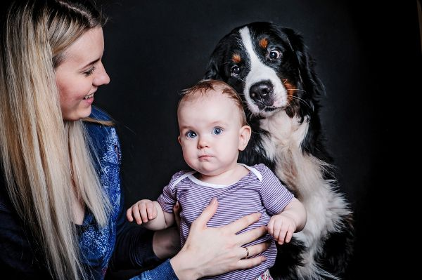 Hoe u uw hond naar de Nieuwe Baby Introduceer 17 april 2015 Honden Uw hond kan hulp nodig wennen aan het hebben van een kind in het huis. Hier is hoe je de overgang goed gaat. Wanneer Kellyann Conway van Tarpon Springs, Fla., Ontdekte dat ze zwanger was, ze haar huishouden van drie honden voorbereid alsof er een orkaan werden bulderende in. Tot op dit moment, haar drie senior-leeftijd honden - een 17-jaar-oude border collie, 13-jaar-oude Akita, en 9-jarige pitbull cross - had beperkte…