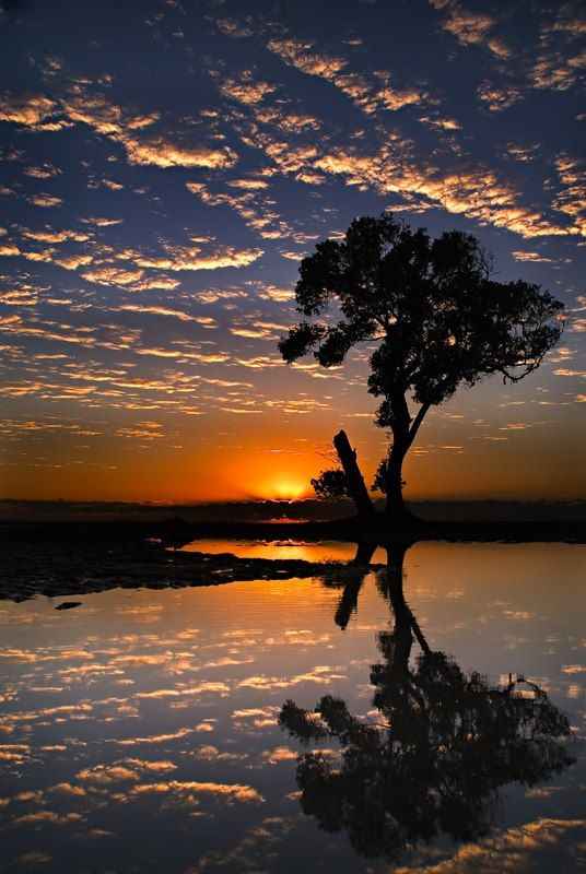 Beachmere - Queensland, Australia  Photography - Robert Charity
