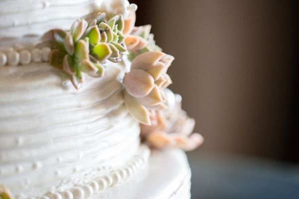 Succulent Wedding Cake | Howling Moon Photography on @SouthBoundBride via @aislesociety