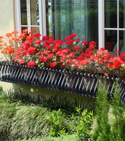 wrought iron window box (needs another flower than geraniums)