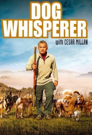 The Dog Whisperer (TV Show) Love Cesar. [and Daddy and Junior]