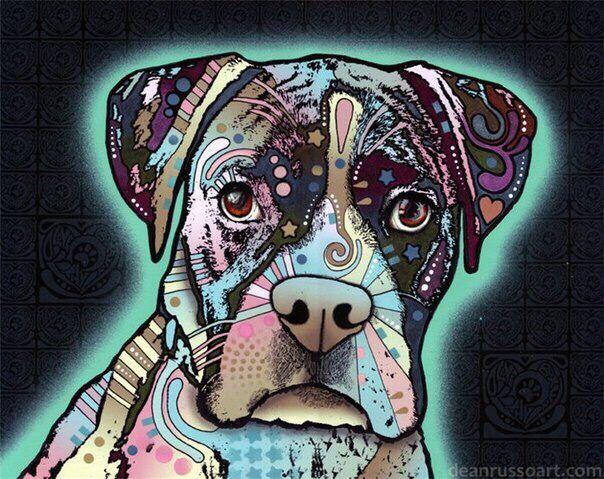 Дин Руссо – нью-йоркский художник, известный уникальными и красочными портретами собак самых разных пород. Яркие цвета, уникальная мозаика, завораживающие формы, символы и в целом – дизайн. Выразительные глаза, уши и мордашки создают яркие и убедительные образы.