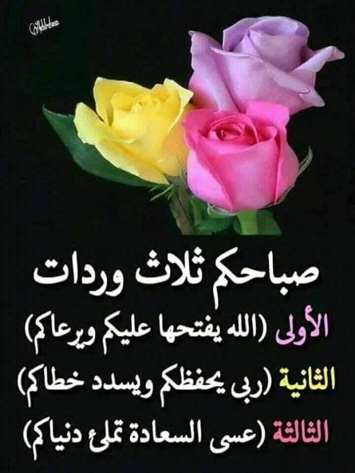 صبآح الخ ي ر صبآح الرض ا والن عيم صبآح الس ع ادة و الهن Good Morning Arabic Good Morning Inspirational Quotes Beautiful Morning