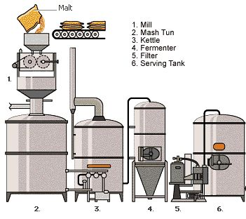 Pin By The Beer Brewing Book On How Beer Is Made Beer