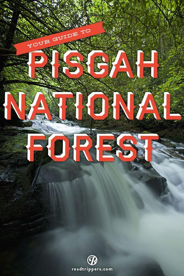 The Pisgah National Forest is a land of mile-high peaks, cascading waterfalls, and heavily forested slopes.