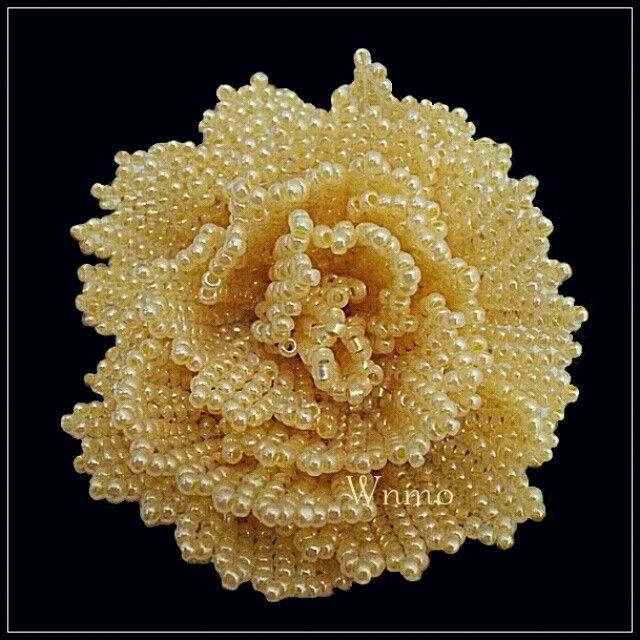Yellow Rose by Wnmo