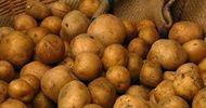 Leczenie ziemniakami, czyli co kryje łupina!!!