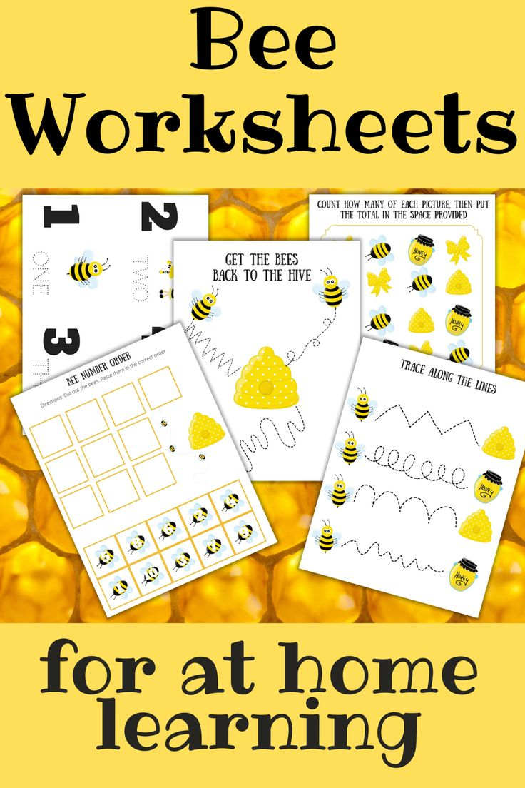 Bee Worksheets for At Home Learning With Preschoolers in ...