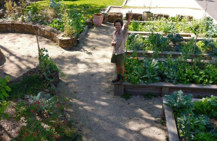 El Blog de La Tabla: Harvest cafe. La buena vida