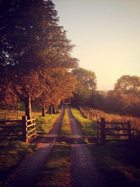 Farmhouse Touches ist ein Marktplatz und ein Blog,…
