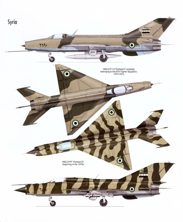During the opening attacks of the 1967 Six Day War, the Israeli Air Force struck Arab air forces in four attack waves. In the first wave, IDF aircraft claimed to have destroyed eight Egyptian aircr…