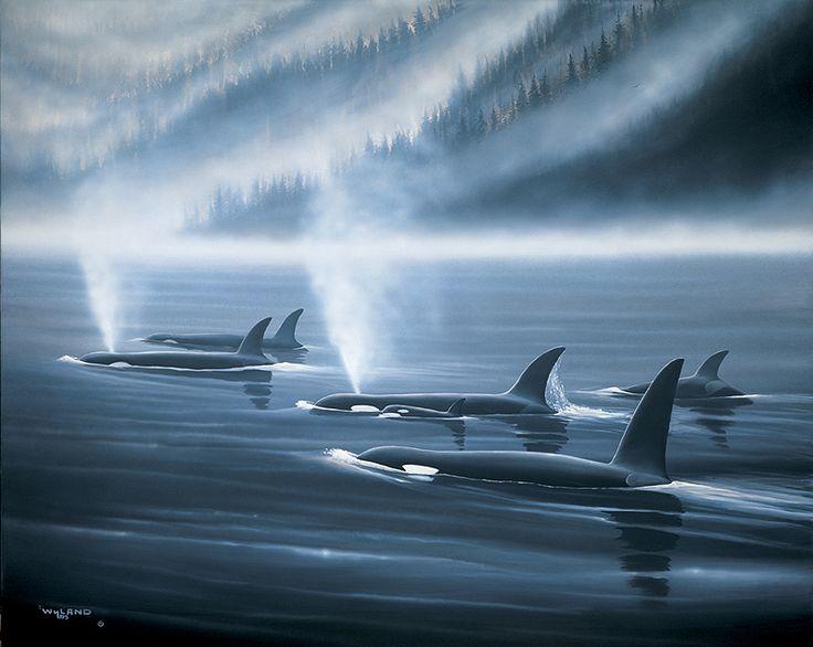 Wyland's Orca Realm | Orca art, Wyland art, Wildlife ...