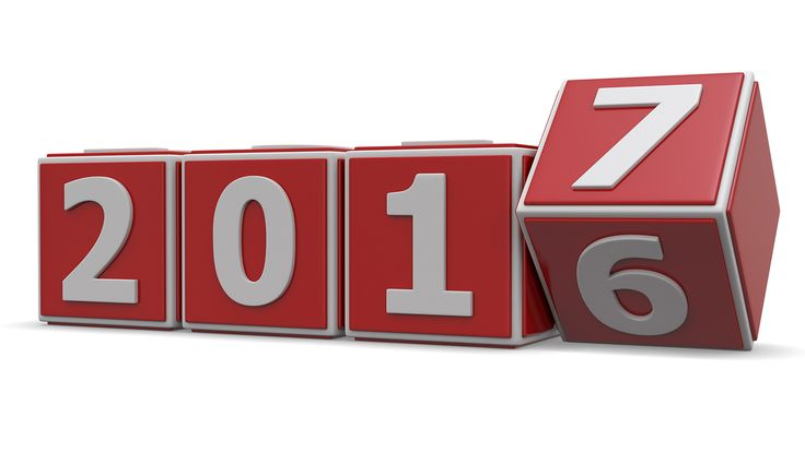 2016   VizWiz Year in Review