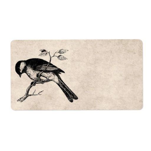 vintage_song_bird_illustration_1800s_birds_label