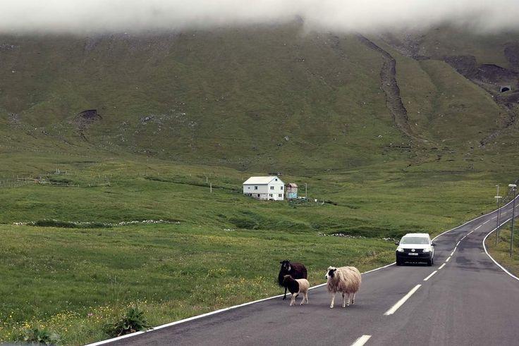 Unterwegs auf den Färöer Inseln