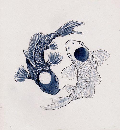 tao fish illustration
