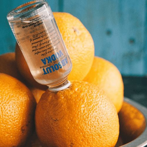 mini vodka laranja embriagada