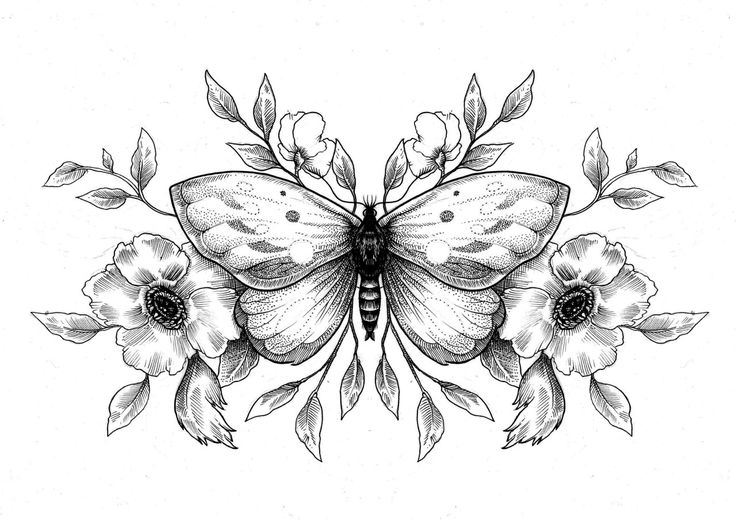 Картинки с цветами черно белые для срисовки, шаблоны для