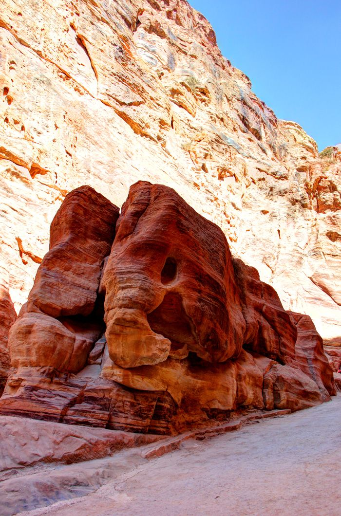 Elefante - Petra