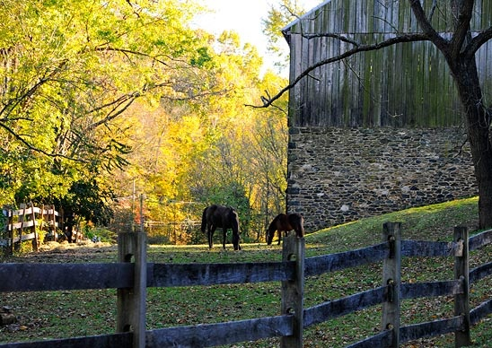 Kennett Square. (Courtesy irina/myBudgetTravel) From: Coolest Small Towns in America. Click on the photo to nominate your favorite small town for 2014's contest!: Small Town, Country Photography, Kennett Square