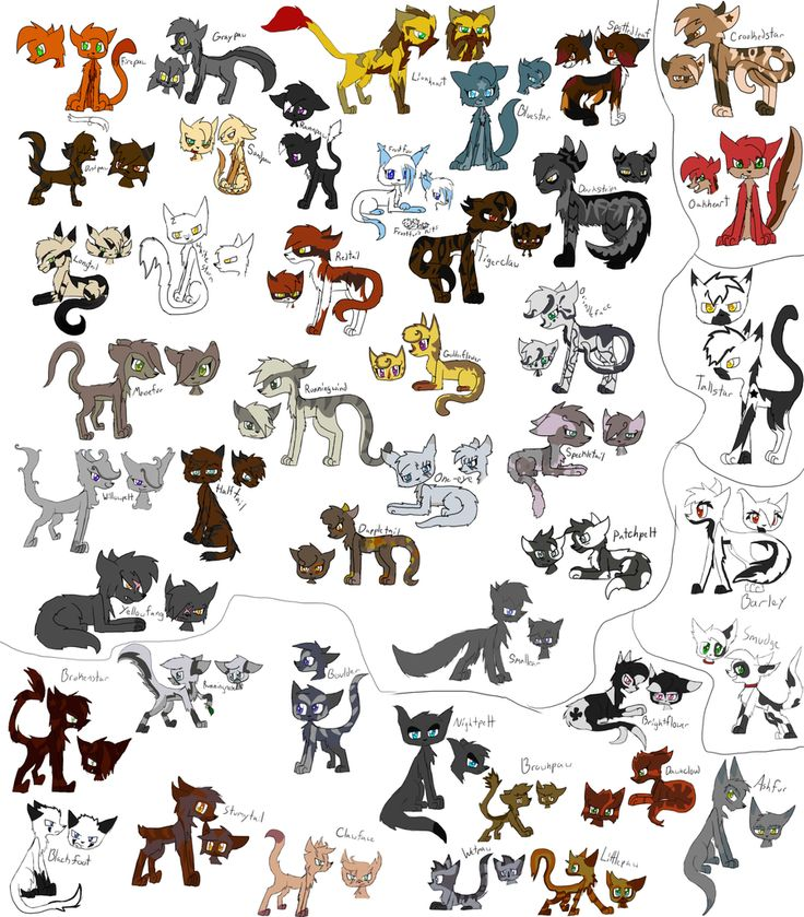 How Many Warriors Books By Erin Hunter Are There: 19 Best Images About Animal Drawings On Pinterest
