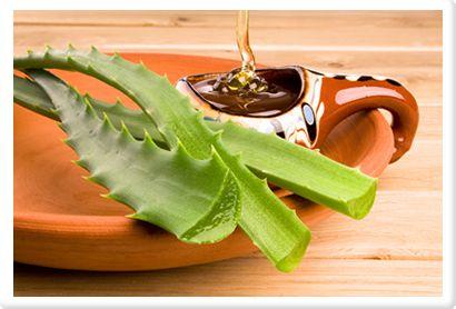 aloe vera info, tips & recipes: Δεν Θέλουν, Οι Φαρμαβιομηχανίες, Το Γνωρίζετε, Θέλουν Να, Να Το, Beauty, Health, Aloe Vera, Natural Remedies