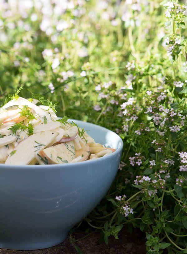 Fennikelsalat med æbler og en hurtigt rørt dressing - smager fantastisk og er lækker som tilbehør til mange retter, bl.a sommerens grillaftener -se opskrift