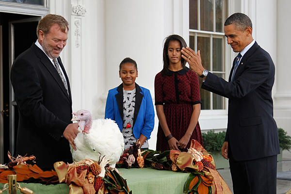 Thanksgiving turkeys get presidential pardon. The Bureau Justice Statistics seeks applications for an examination of the processing of petitions for Presidential Pardons.  http://www.topgovernmentgrants.com/grants_gov_display.php?program=BJS-2012-3353