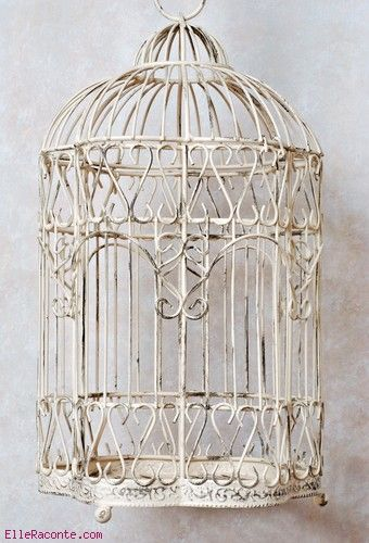 101 best bird cage images on pinterest bird cages bird houses and birdhouses. Black Bedroom Furniture Sets. Home Design Ideas