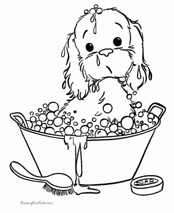 96 best Dogs images on Pinterest Coloring books, Print coloring - new coloring pages beagle puppies