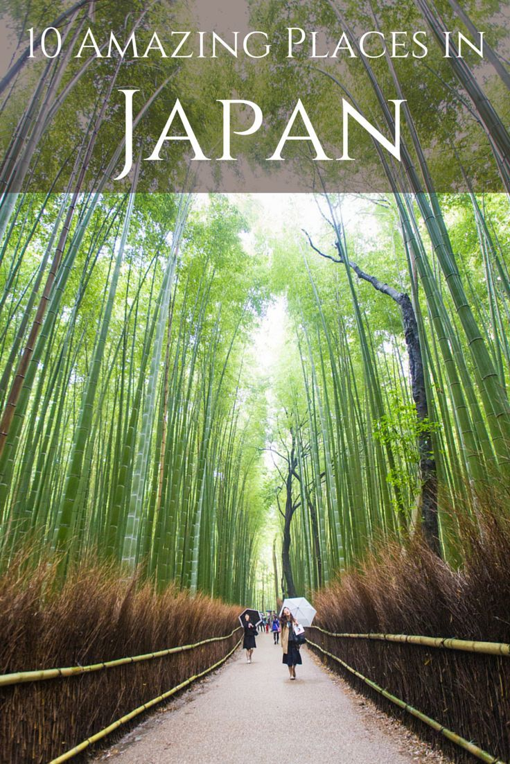 In traveling around southern Japan with National Geographic Travel for ten days, I visited a lot of cool places. These are my ten favorites - places to add to your travel wish lists.