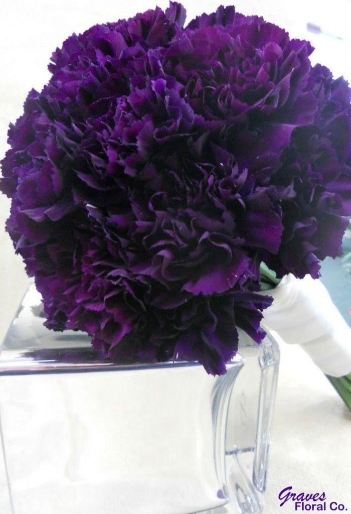 Dark purple carnation bouquet                                                                                                                                                                                 More
