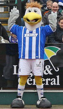 Gully the Seagull - Brighton and Hove Albion