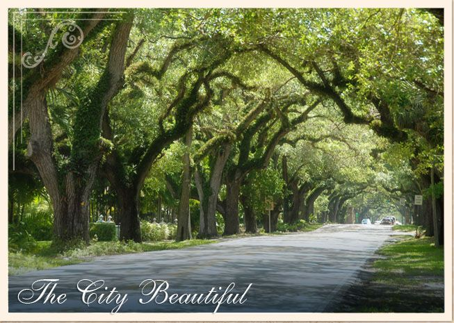 Coral Gables, Florida | Coral Gables, Florida | Pinterest ...